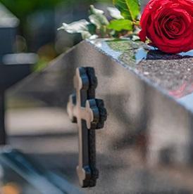 Róża nanagrobku